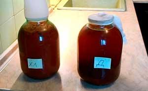 рецепт изготовления домашней браги